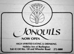 Jonquils, Holiday Inn, Burlington MA