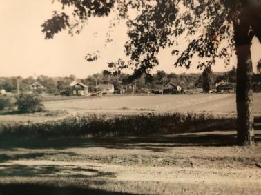 Crawford Farm and Newbridge Ave, Burlington MA