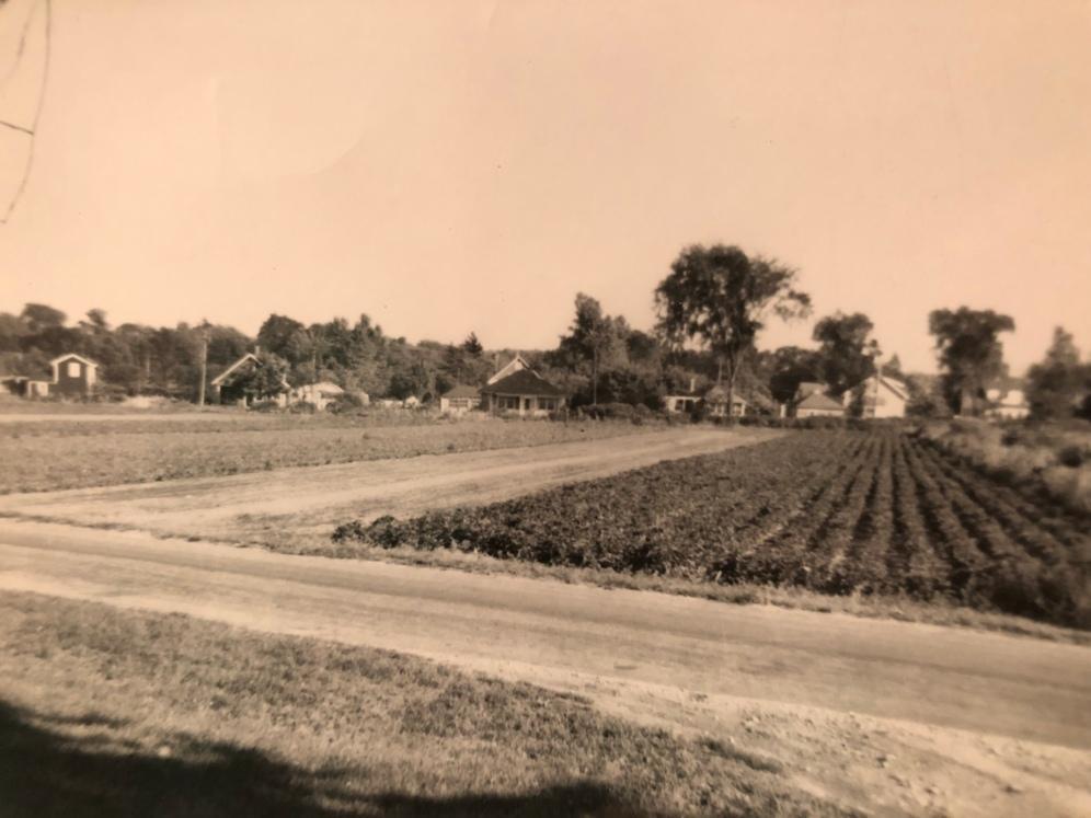 Crawford Farm with Newbridge Ave., Burlington MA