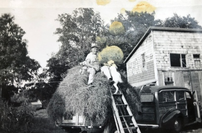 Olson chicken coop and egg delivery wagon